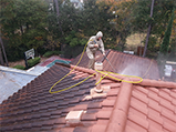 Tile Roof Cleaning Atascocita